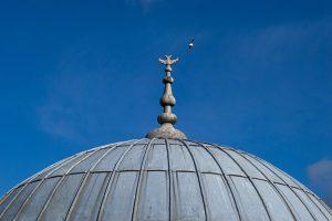 Süleymaniye Camii Rabi Medresesi Çift Başlı Kartal
